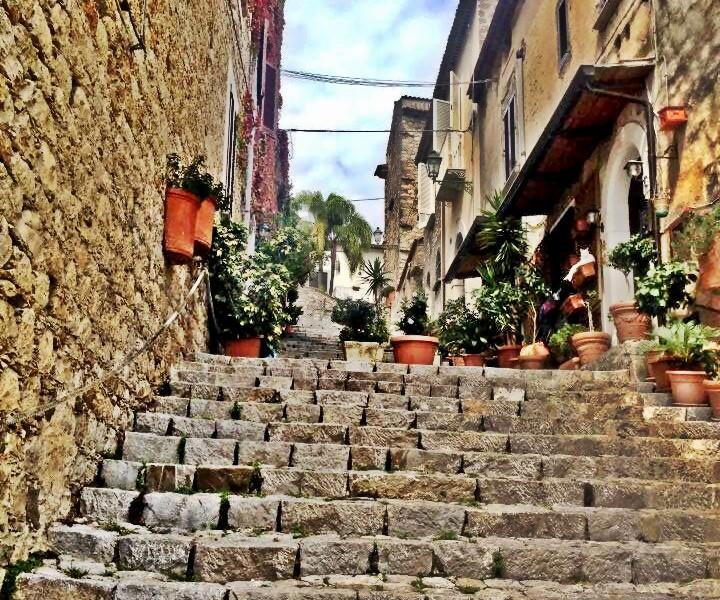 scario steps